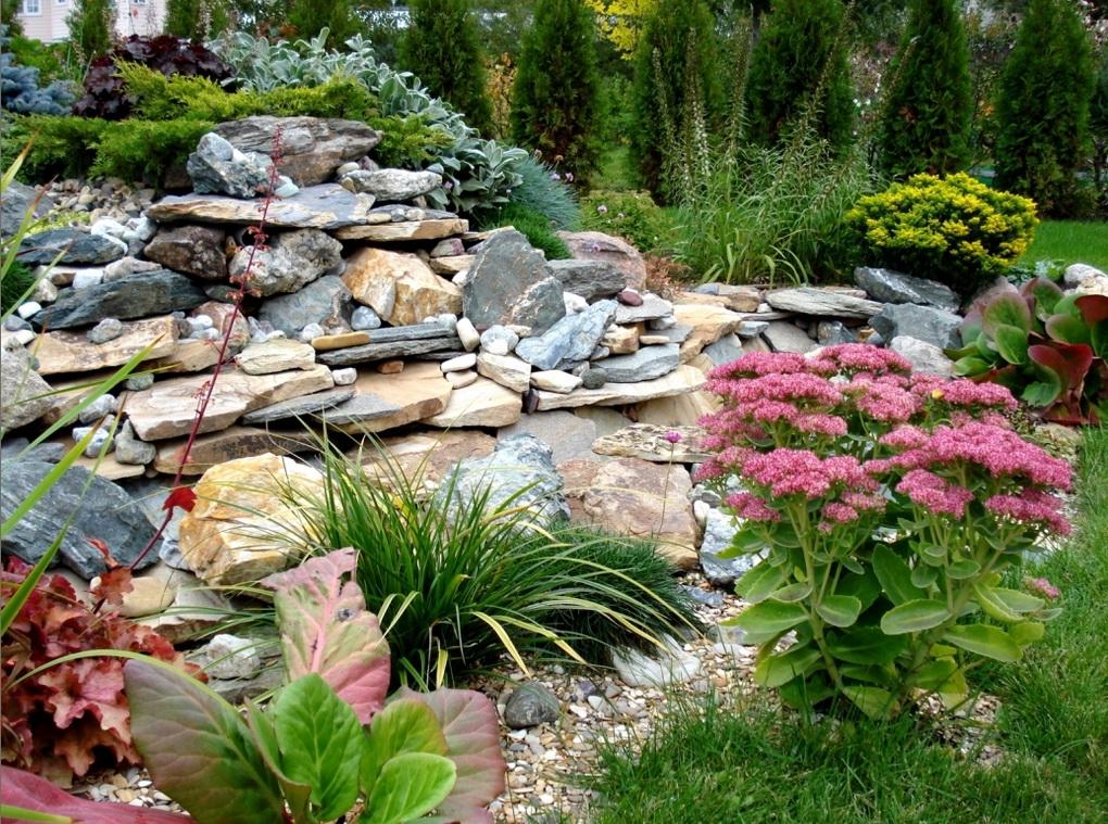 альпинарий в саду фото саратове аллее роз