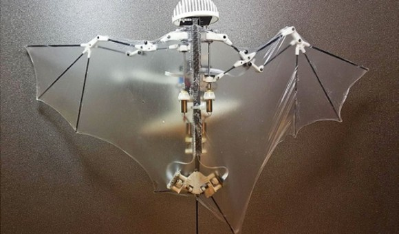 Bat Bot - робот, умеющий летать, как летучая мышь