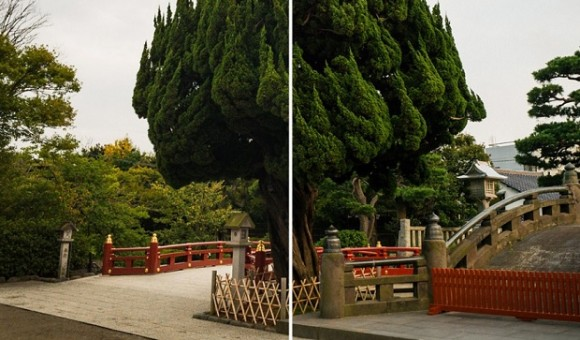 Фотографии сделанные на iPhone 7, сравнили с Leica за $6 тысяч