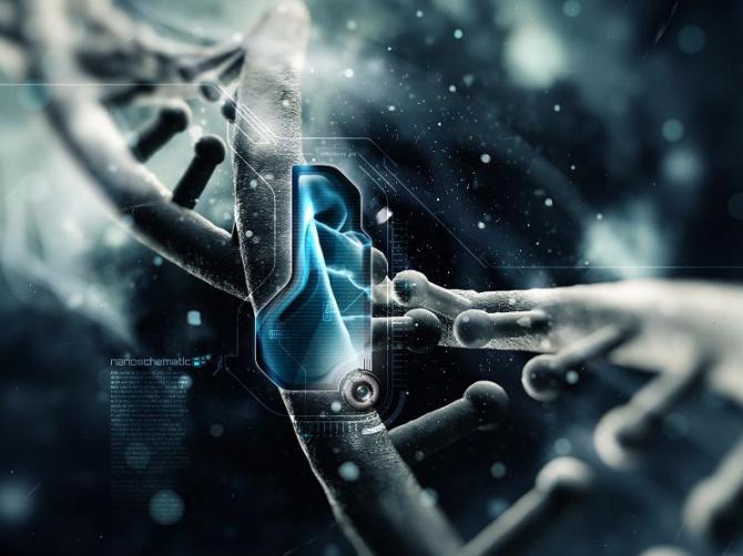 Генетическое редактирование CRISPR-технологии в медицине