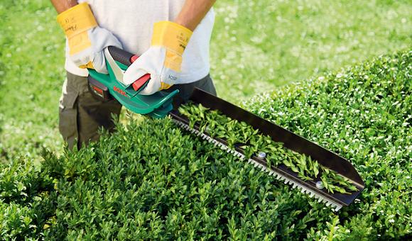 Как выбрать садовый кусторез, и что лучше — электрический кусторез или мотокусторез