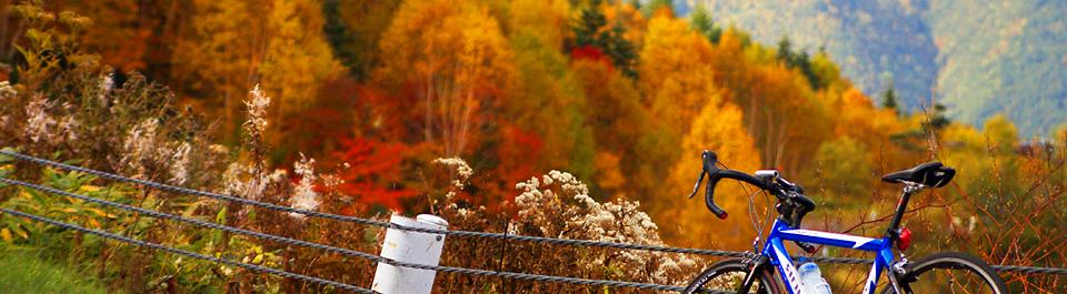 Картинки по запросу осень на велосипеде