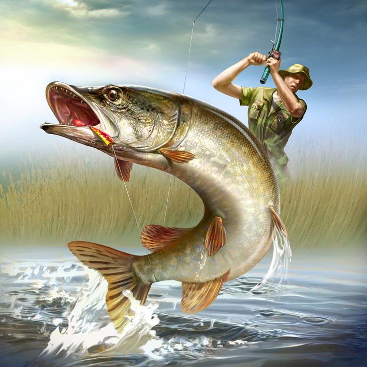 картинки рисунки рыбалка