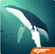 Топ-10 приложений для iOS и Android (10 - 16 апреля) - Tap Tap Fish Logo